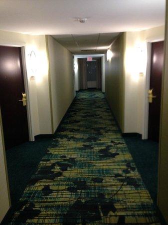 SpringHill Suites Florence: Hallway