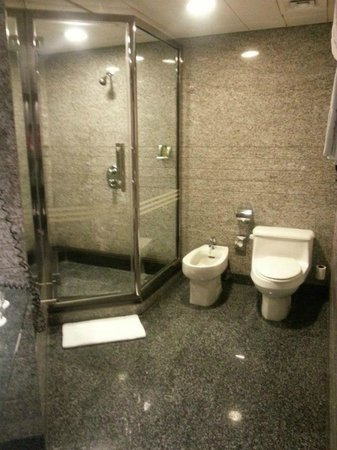 Hilton Dubai Creek: One of the toilets