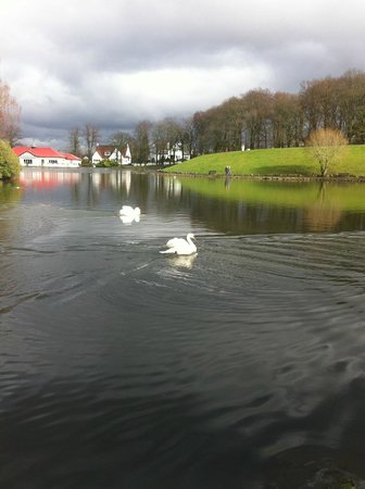 Giffnock, UK: Boatside cafe