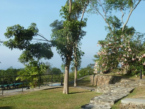 Melheim Resort: Hotel gardens