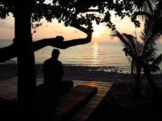 Paradise Palms Resort: Relaxation at sunset.