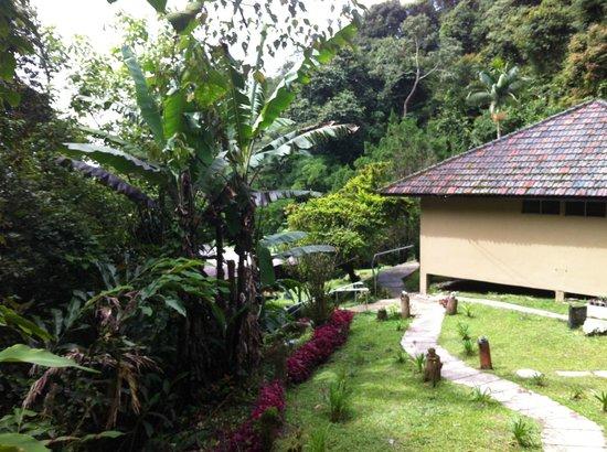 J Residence: Aussicht vom kleinen Balkon