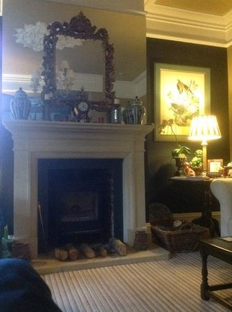 Tir y Coed Country House : Fabulous Fireplace !