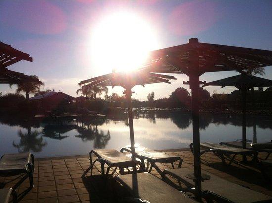 ClubHotel Riu Tikida Palmeraie: Pool & Pool Bar