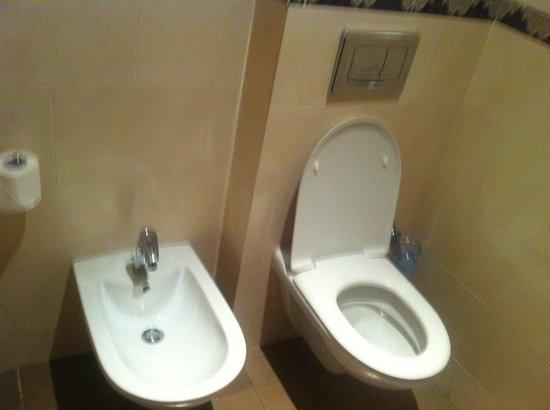 ClubHotel Riu Tikida Palmeraie: Toilet