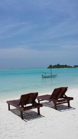 Sun Island Resort and Spa: vu de la chambre
