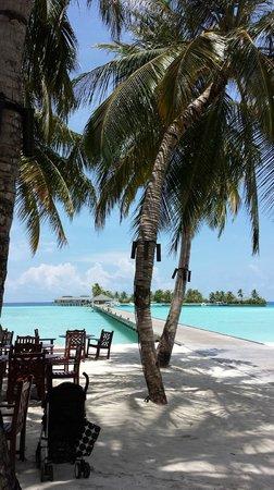 Sun Island Resort and Spa: le ponton depuis le lobby
