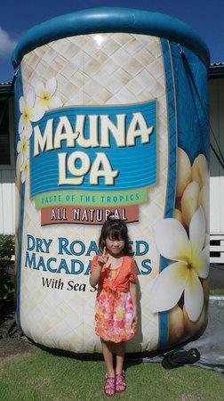 Mauna Loa : 入り口でパチリ