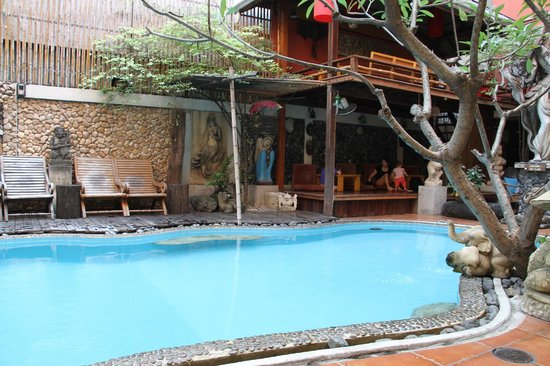 Villa Cha-Cha: Cute pool! Too cold to swim in January though.