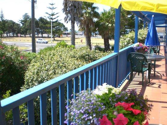 Orewa Beachcomber : View across the road to the beach