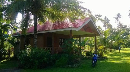 Agohay Villa Forte Beach Resort: Superior Cottage in the daylight