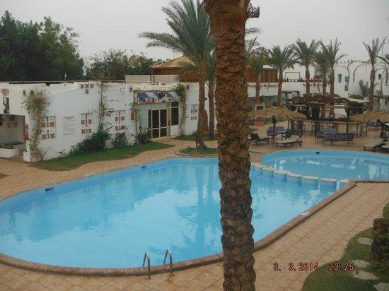 Ocean Club Hotel: вид из моего окна