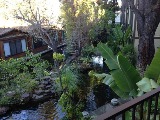 Dinah's Garden Hotel: View of lagoon from the room - shows 'oasis' feel
