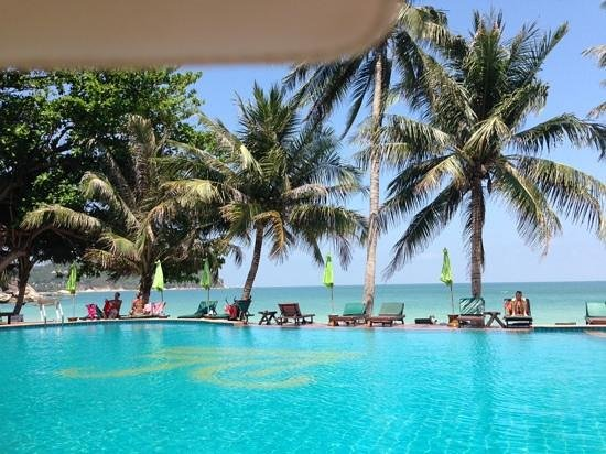 Koh Phangan Dreamland Resort : overlooking the pool