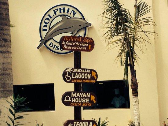 Chankanaab Beach Adventure Park: This way to the fun