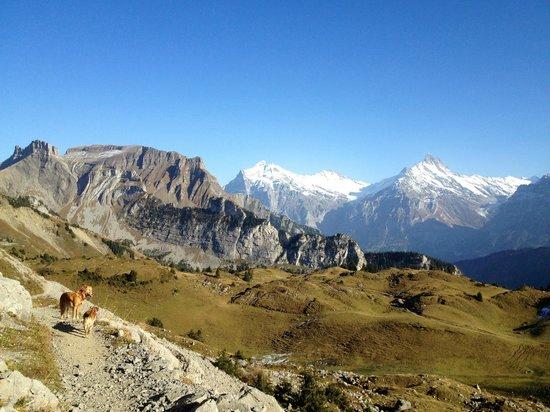 Schynige Platte: Sicht auf Alp Sielten