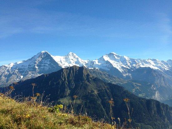 Schynige Platte : Eiger, Mönch und Jungfrau