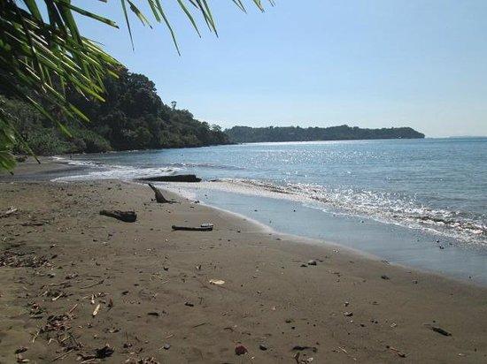 Finca Maresia: plage