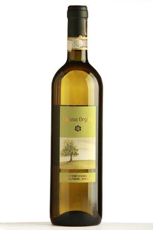 donna orgilla pecorino DOCG offida wine Fiorano winery