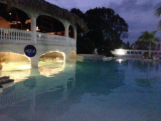 Cofresi Palm Beach & Spa Resort : Piscine et bar