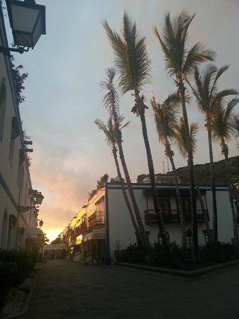 Sol y Luna - Puerto Mogán: Palmeras con la puesta de sol