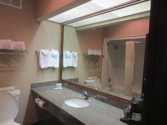 Quality Inn & Suites Seabrook Nasa Kemah : bathroom counter