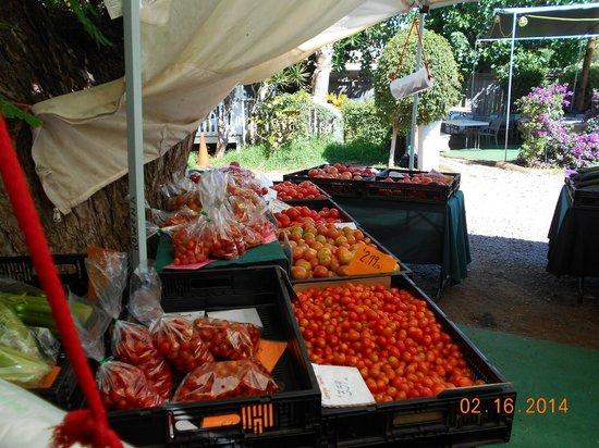 Kauhale Makai, Village by the Sea: Aloha Market