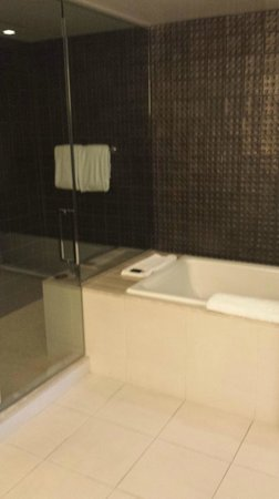 Hard Rock Hotel and Casino: Shower/Tub in Suite