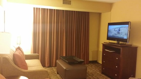 Homewood Suites Tampa Brandon: Larger windows than most hotels...