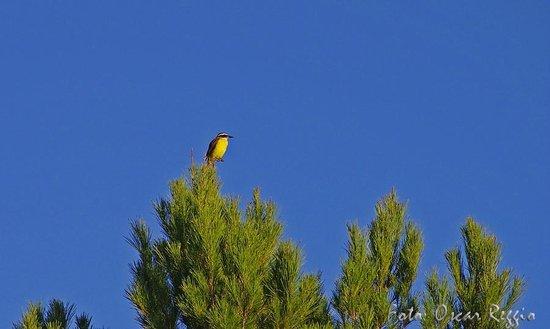 Posada de las Sierras: Visita de las 18,30hs