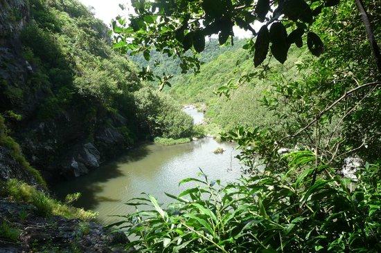Tamarin Falls: POINT DE VUE
