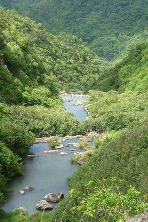 Tamarin Falls : POINT DE VUE