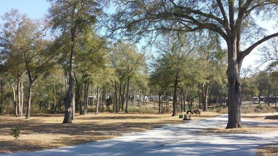 Fair Harbor RV Park : Small play area...love all the trees!