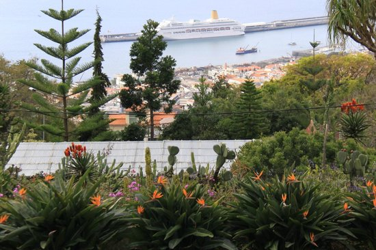 Madeira Botanical Garden : view over Funchal
