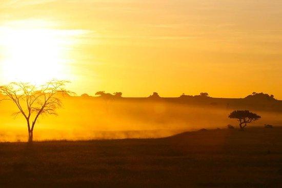 Four Seasons Safari Lodge Serengeti : Sunrise over the Serengeti