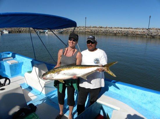 Yellowtail tuna picture of arturo 39 s sportfishing loreto for Baja california fishing