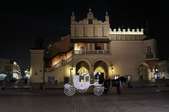 4 Seasons Apartments Cracow: Magical