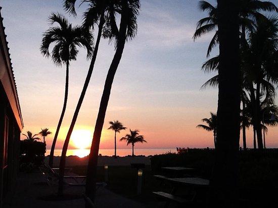 Islander Resort, a Guy Harvey Outpost : Sunrise outside our room