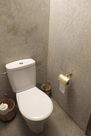 Riad Shambala : Toilet in senior suite