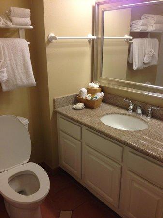 Hilton Grand Vacations at SeaWorld : Clean; granite countertop