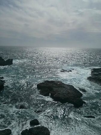 Point Lobos State Reserve: Point Lobos Reserve