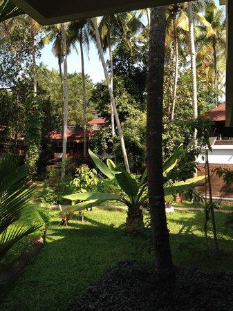 Akhil Beach Resort: the garden