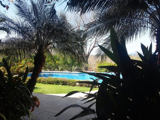 Luna Azul: Day time view of the infinity pool