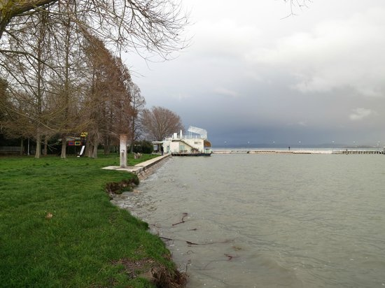 Lake Trasimeno: Monkey Beach