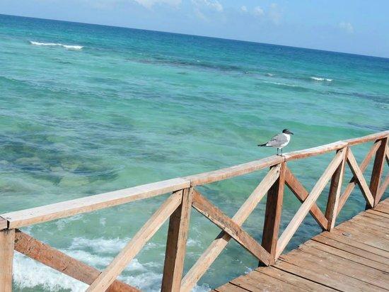 Ocean Breeze Riviera Maya Hotel: Deck do Hotel