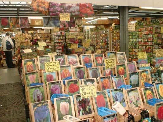 Flower Market / Bloemenmarkt: Tulips for sale