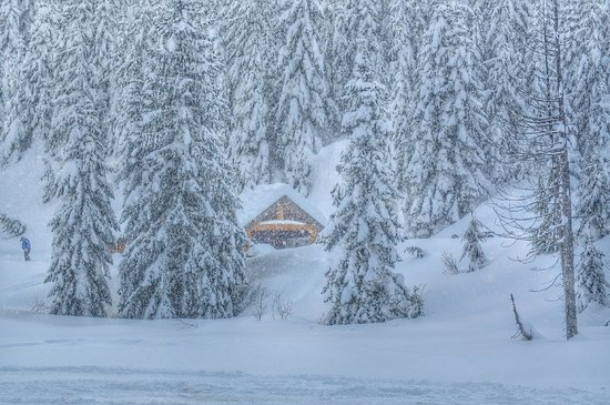 Blackcomb Snowmobile: Lunchtime - your own private secluded log cabin