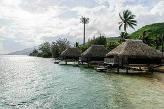 Hilton Moorea Lagoon Resort & Spa: Beach Overwater Bungalows