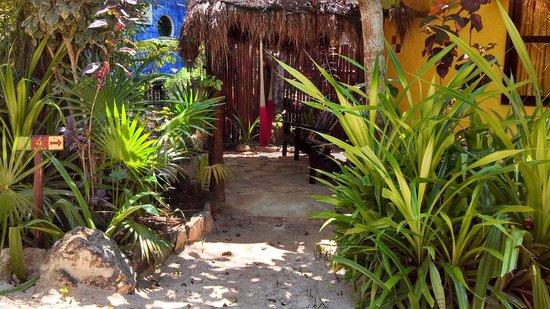 Posada Ecologica Dos Ceibas: Single bungalo
