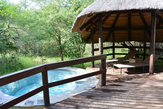 Londolozi Founders Camp: Plunge pool
